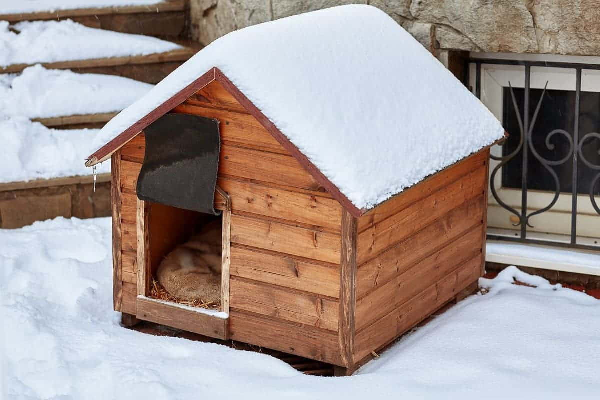 Best Dog Houses for Winter - pawscessories.com
