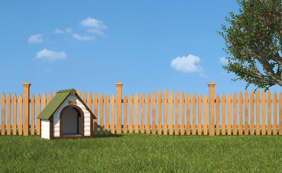 Petmate Barn III Dog House Review - pawscessories.com