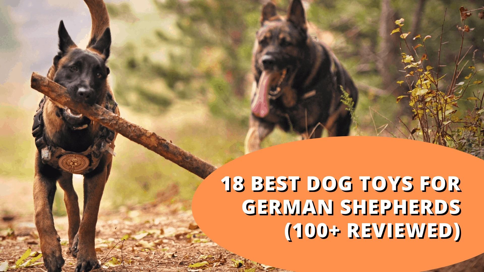 best dog toys for german shepherds
