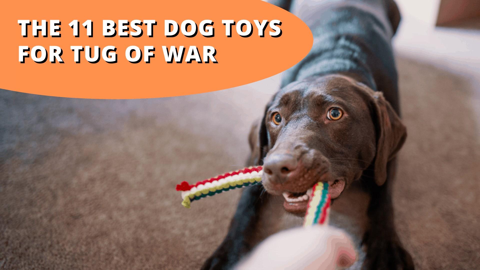 best dog toys for tug of war
