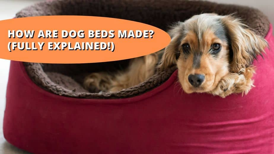 how are dog beds made